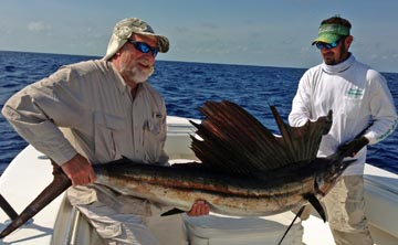Sailfish_Bahia_honda_tarpon_fishing_charters_summerland_key_Florida