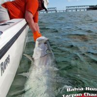 Joey Quinn with a Tarpon on a Captain Rapps Charter
