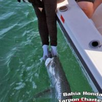 Melinda Buckley bahia honda tarpon fishing charter