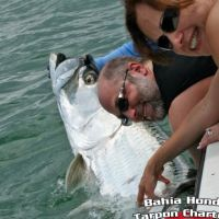 Jeff Rapps tarpon fish bahia honda big pine key fl