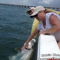 Bahia fishing charter Tarpon