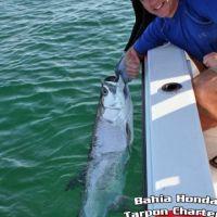 Jeff Jankowski tarpon fishing charter