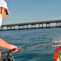 Glyn Hall Bahia Honda tarpon fishing Charter