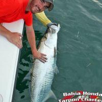 TJ bahia honda tarpon fishing