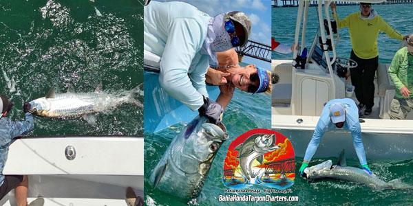 Bahia Honda Tarpon Charters Florida Keys Tarpon Fishing
